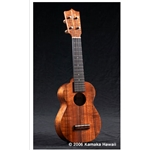 Authorized Kamaka ukulele dealer.
